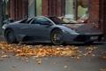 Картинка серый, листва, Lamborghini, суперкар, Murcielago
