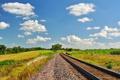 Картинка зелень, рельсы, железная дорога
