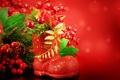 Картинка красный, ягоды, ель, ветка, праздники, сапожок, остролист