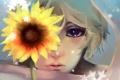 Картинка хеталия и страны оси, шарф, hetalia, подсолнух, russia, цветок, снежинки