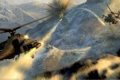 Картинка атака, вертолеты, medal, of honor 2