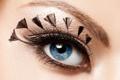 Картинка девушка, глаз, ресницы, перья, макияж, тени