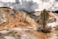 Картинка Wyoming, Mammoth