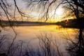 Картинка закат, река, ветки, вечер, природа