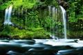 Картинка лес, природа, река, водопад, forest, river, nature