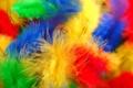 Картинка перья, макро, цвет