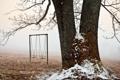 Картинка иней, снег, качели, дерево, ветви, площадка, начало зимы