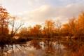 Картинка деревья, облака, осень, небо, река
