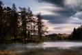 Картинка лес, пейзаж, туман, озеро