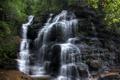 Картинка лес, деревья, камни, водопад, Австралия, Wentworth Falls