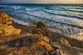 Картинка пейзаж, берег, утро, море