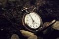 Картинка листья, земля, Париж, часы, Эйфелева башня, циферблат, цепочка