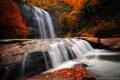 Картинка осень, лес, деревья, камни, водопад, природа. река