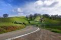 Картинка дорога, небо, деревья, пейзаж