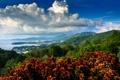 Картинка облака, солнечный, небо, лес, лодки, деревня, залив