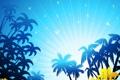 Картинка небо, пальмы, море