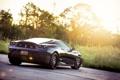 Картинка трава, чёрная, F430, Ferrari, феррари, black, блик