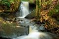 Картинка осень, лес, листья, камни, водопад, поток, каскад