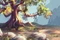 Картинка горы, природа, корни, камни, дерево, арт