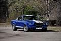 Картинка Mustang, Ford, Shelby, мустанг, форд, шелби, 1966