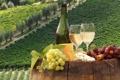 Картинка вино, сыр, виноград, штопор, виноградники