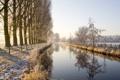 Картинка зима, деревья, природа, речка, аллея