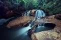 Картинка река, камни, водопад, джунгли
