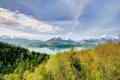 Картинка лес, горы, озеро. природа