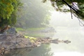 Картинка туман, озеро, камни, дерево