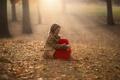 Картинка листья, девочка, пальто, боке