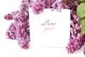 Картинка цветы, сиреневый, лепестки