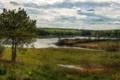 Картинка лето, пейзаж, природа, река, дерево