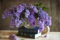 Картинка цветы, часы, книги, сирень