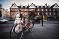 Картинка девушка, велосипед, улица