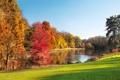 Картинка листья, деревья, пейзаж, природа, озеро, trees, landscape
