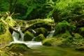 Картинка лес, камни, Швейцария, речка, Switzerland, Grellingen, Греллинген