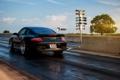 Картинка car, машина, дерево, черный, фары, Porsche, порш