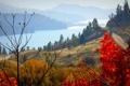 Картинка дорога, осень, небо, деревья, горы, озеро, ветка