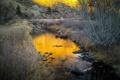 Картинка осень, трава, река, ручей, камни, склон