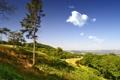 Картинка зелень, небо, трава, облака, деревья, холмы, Англия