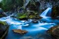 Картинка лес, деревья, река, ручей, камни, водопад, Waterfall