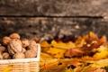 Картинка осень, листья, грецкий орех