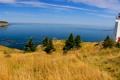 Картинка мыс, трава, небо, Grand Manan, маяк, канада, дом