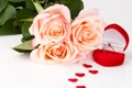 Картинка цветы, розы, кольцо, сердечки, flowers, hearts, ring