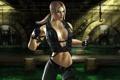 Картинка 2011, Mortal Kombat, Соня, MK 9