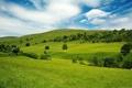 Картинка лето, небо, трава, равнина, долина, простор