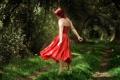 Картинка дорога, лес, девушка