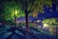 Картинка пейзаж, ночь, город, парк