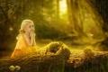 Картинка лес, лето, бабочки, лягушка, девочка, ствол, бревно