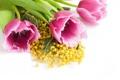 Картинка тюльпаны, розовые, желтая, крупным планом, мимоза